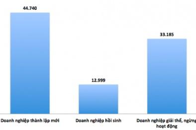 Hơn 220 doanh nghiệp đang 'chết' mỗi ngày