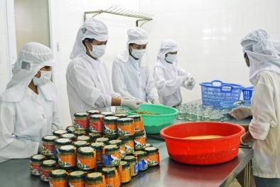 OCOP Quảng Ninh: Hướng đi đúng đắn nâng cao năng suất chất lượng
