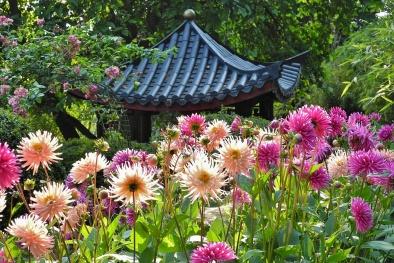 Những khu vườn ngập hoa tuyệt đẹp này sẽ giúp bạn quên đi cơn nóng mùa hè