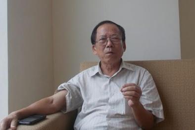 PGS.TS Nguyễn Duy Thịnh: Cá nục nhiễm phenol không quá đáng ngại