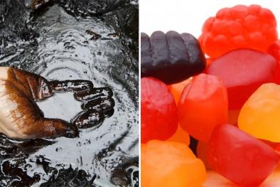 Hoảng hồn với độ 'độc' trong đồ ăn vặt của trẻ