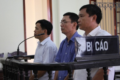 Ba cán bộ kiểm lâm hầu tòa vì nhận 20 triệu tiền 'làm luật'