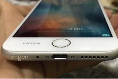 Ảnh iPhone 7 đầu tiên của đại gia Việt được trả giá 500 triệu không bán