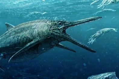 Hóa thạch quái vật biển nằm trong quan tài đá suốt 170 triệu năm