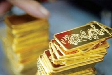 Giá vàng hôm nay ngày 23/9: Giá vàng tăng vọt hai phiên liên tiếp