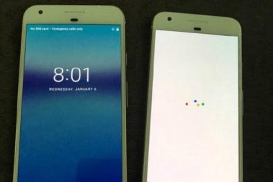 Hình ảnh mới nhất cho thấy điện thoại Pixel của Google giống iPhone 7