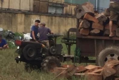 Cần làm rõ lượng lớn gỗ hương 'bốc hơi' khi cảnh sát đang kiểm tra