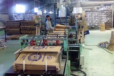 Được đầu tư 'khủng' về máy móc, ngành bao bì sẽ sớm tăng năng suất