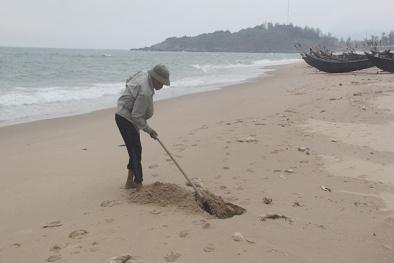 Đã có định mức bồi thường thiệt hại do sự cố môi trường biển