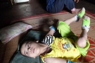 Ăn chặn tiền của 100 người khuyết tật, Chủ tịch Hội Nông dân xã bị bắt