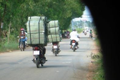 Nhức nhối nạn buôn lậu 'xe máy chạy thành đoàn' ở Long An