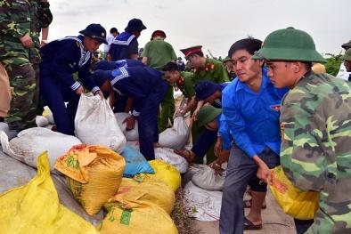 Quảng Ninh sẵn sàng ứng phó với diễn biến phức tạp của bão số 7