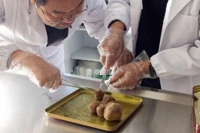 Sửng sốt phát hiện vật lạ trong bụng vật nuôi được định giá chục tỷ đồng