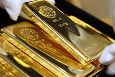 Giá vàng hôm nay 11/11: Vàng tiếp tục tuột dốc không phanh