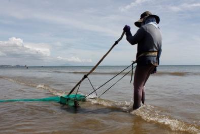 Kiếm 500.000 đồng/ngày bằng nghề cào chang chang ở Mũi Né