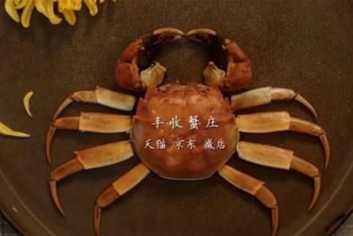 Nghệ thuật ăn cua cầu kỳ của quý tộc Trung Quốc