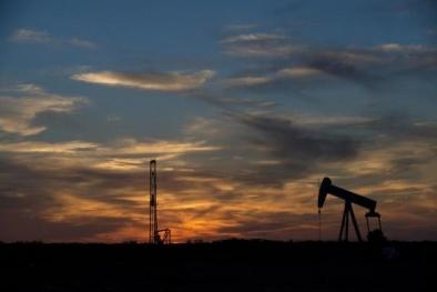 Giá dầu cán mốc cao nhất sau hiệp ước đóng băng của OPEC