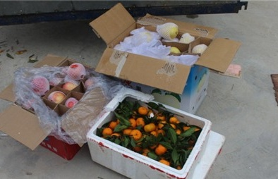 Bắt và tiêu hủy 2 xe tải hoa quả Trung Quốc tuồn về VN tiêu thụ