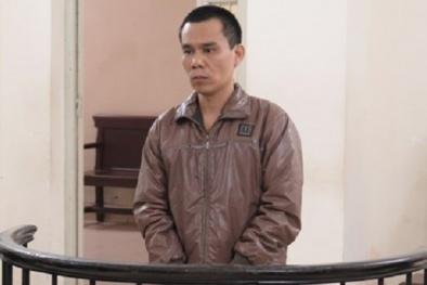 Phó Tổng giám đốc lừa đảo môi giới bất động sản lãnh án tù