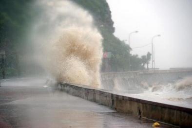 Công bố 8 vùng nguy cơ bão, nước biển dâng và gió ở đất liền