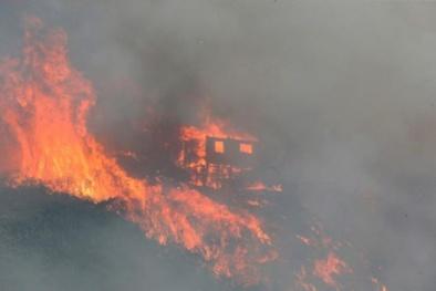 Cháy rừng ở Chile, hơn 100 ngôi nhà bị thiêu rụi