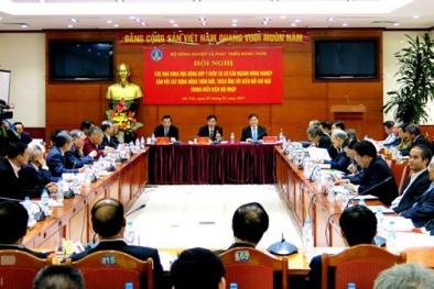 Bộ trưởng Chu Ngọc Anh: KH&CN nâng cao khả năng cạnh tranh nông nghiệp Việt Nam