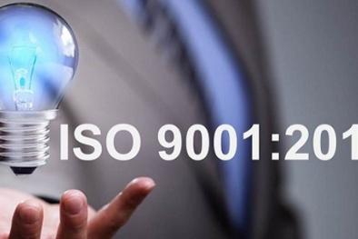 Ban hành hướng dẫn áp dụng TCVN 9001:2015, TCVN ISO 14001:2015