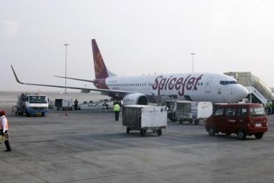 Máy bay chở 176 hành khách phải hạ cánh khẩn cấp vì gặp trục trặc