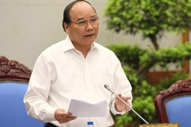 Thủ tướng: Cần đẩy mạnh nghiên cứu, ứng dụng KHCN cao trong nông nghiệp