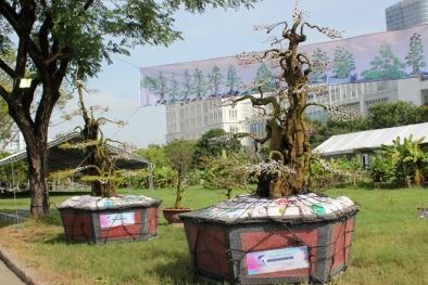 Cặp khế kiểng được rao bán giá 12 tỷ tại chợ hoa Tp. Hồ Chí Minh