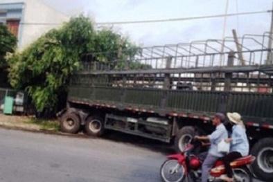 Nghệ An: Xe tải chở trâu bò đâm sập nhà dân, 3 người thương vong