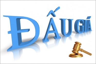 Quy định mức thu phí đấu giá tài sản như thế nào