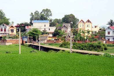 Hà Nội sẽ có trên 80% xã đạt chuẩn nông thôn mới vào năm 2020