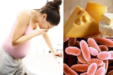 Ăn phô mai nhiễm khuẩn Listeria ảnh hưởng nghiêm trọng tới thai nhi