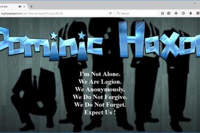 Website của 3 sân bay Tân Sơn Nhất, Rạch Giá, Tuy Hòa bị tấn công