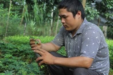 Thạc sĩ tật nguyền làm giàu từ vườn ươm thu 3 tỷ đồng/năm