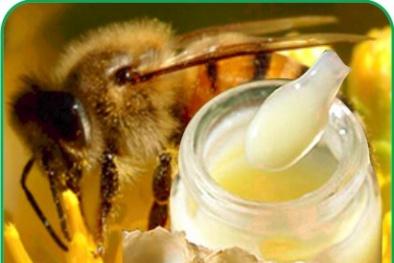 Công bố 2 website quảng cáo bán sữa ong chúa và sụn cá mập sai phạm