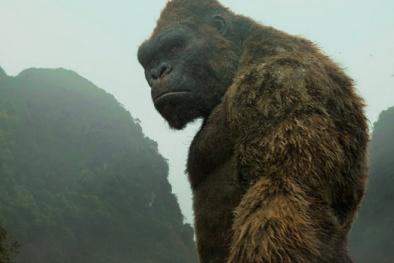 'Kong: Skull Island' thu 104 tỷ đồng tại Việt Nam sau 7 ngày