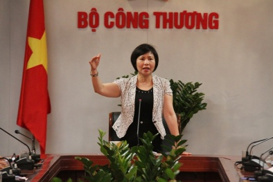 Thứ trưởng Hồ Thị Kim Thoa có tài sản 'khủng' tại Điện Quang vì được ưu đãi