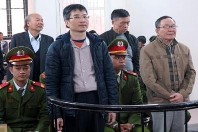 Đại án Vinashinlines: Cha con Giang Kim Đạt kháng cáo