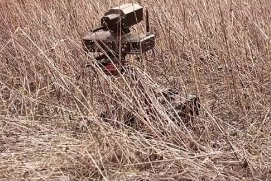 Video: Robot tí hon RS1A3 Mini Rex diệt mục tiêu chớp nhoáng