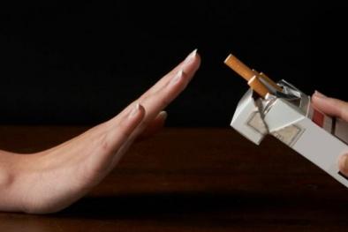 Bộ KH&CN phát động cuộc thi viết về phòng, chống tác hại của thuốc lá