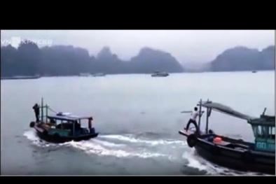 'Đua tàu' gỗ trên vịnh Hạ Long, hai ngư dân nhận 'kết đắng'