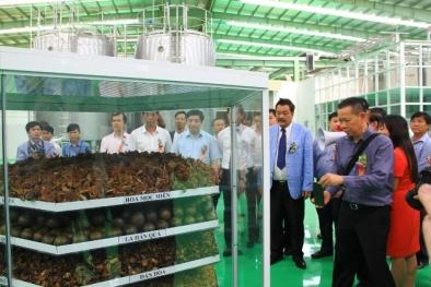 VN có nhà máy sản xuất nước giải khát công nghệ tối tân nhất thế giới