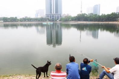 Lấp 1ha hồ Thành Công để xây chung cư là điều không thể được