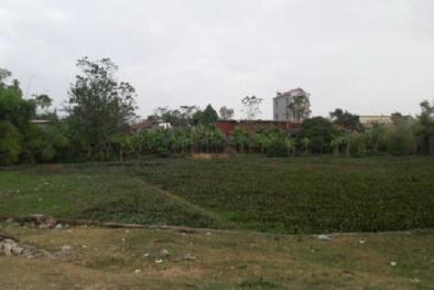Thắc mắc về đất khai hoang có đăng ký kê khai và được cấp quyền sử dụng bị thu hồi