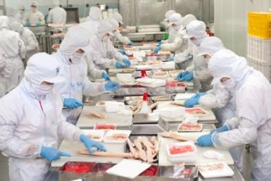 Áp dụng ISO 22000 trong lĩnh vực thực phẩm doanh nghiệp được lợi gì?