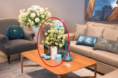 Phong thủy phòng khách chứa đầy 'ám khí' nếu trang trí với những đồ vật sau