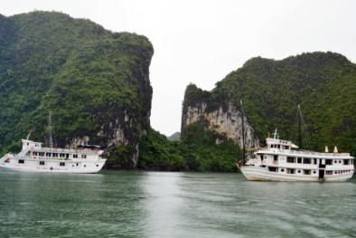 8 tàu du lịch ở Hạ Long sai phạm nghiêm trọng bị đình chỉ hoạt động