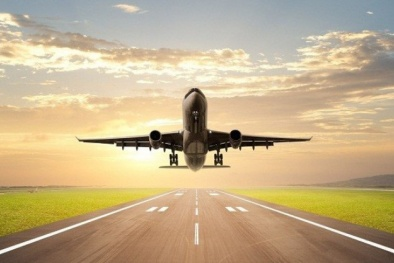 Thực hư việc FLC lập hãng hàng không Tre Việt